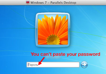 cant-paste-password