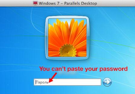 cant-paste-password